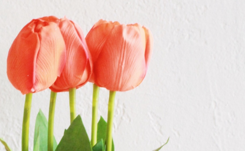 Spring Tips for YourNest